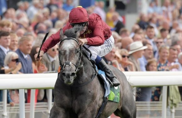 Juddmonte International Stakes'i ROARING LION kazandı.