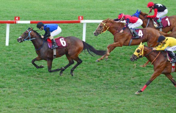 JOE CLARKE Koşusunu KURUCU kazandı…