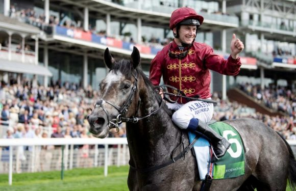 Woodbine ve Leopardstown'da G1 mücadeleler…
