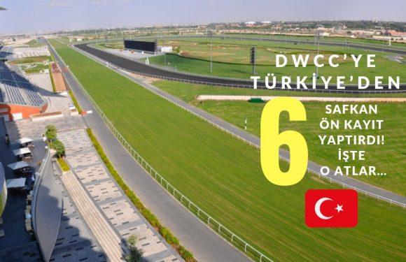 DWCC'ye Türkiye'den 6 Safkan Kayıt yaptırdı!