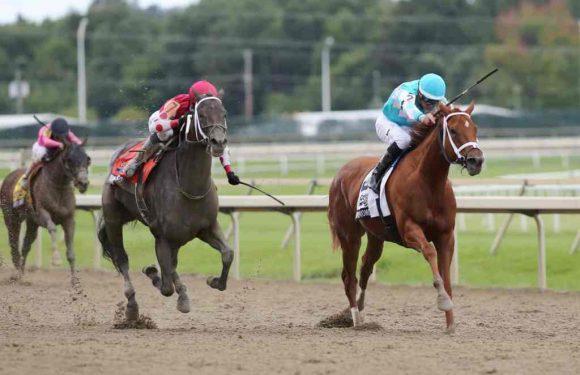 At Gösterme Yarış Değiştirdi…