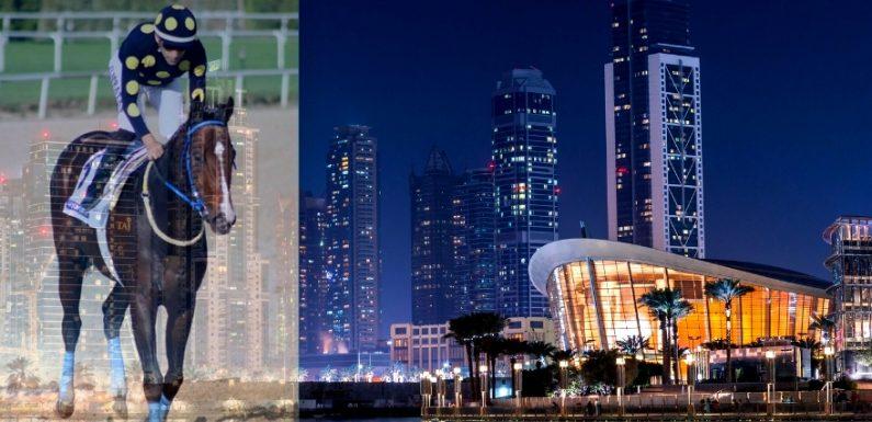 GOOD CURRY'nin Dubai'de ilk hedefi 14 Şubat!