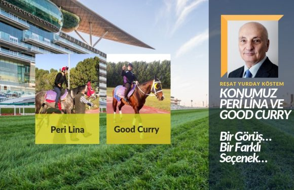 Konumuz PERİ LİNA ve GOOD CURRY…