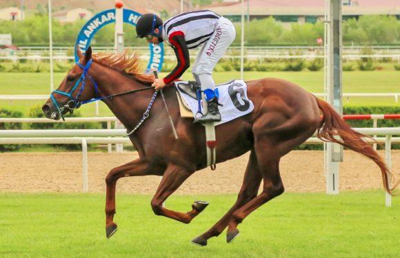 Yeni hedef Mehmet Akif Ersoy…