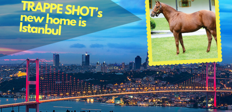 TRAPPE SHOT's new home is Istanbul