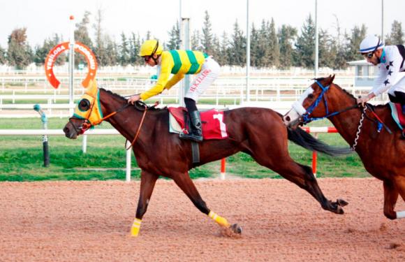 BARİKAT Adana'da 3'te 3 yaptı!