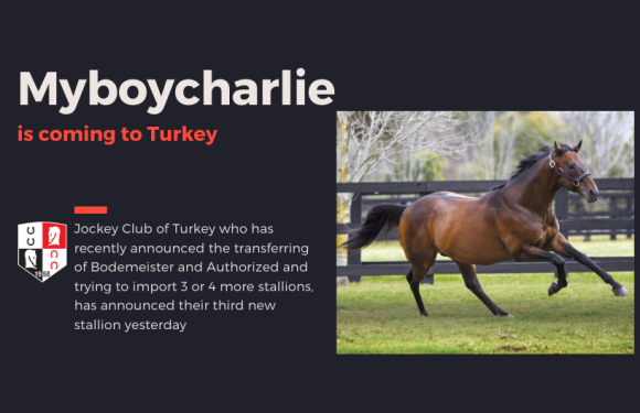 MYBOYCHARLIE is coming to Turkey