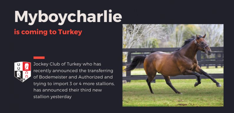 MYBOYCHARLIE is coming to Turkey