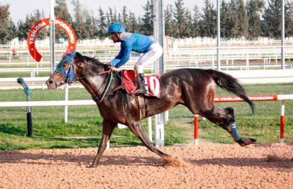 Adana Barosu Koşusunu THE MATCHED kazandı