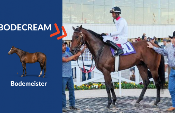 Texas Turf Mile Stakes'i BODECREAM kazandı
