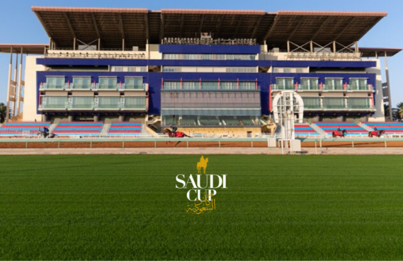 The Saudi Cup meetingine 3 atımız kayıt oldu!