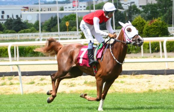 Selami Kavçin Koşusunda AYLİZ'den etkili sprint!
