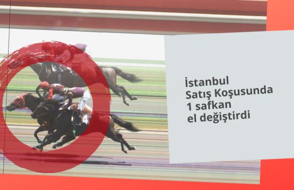 İstanbul Satış Koşusunda 1 safkan el değiştirdi