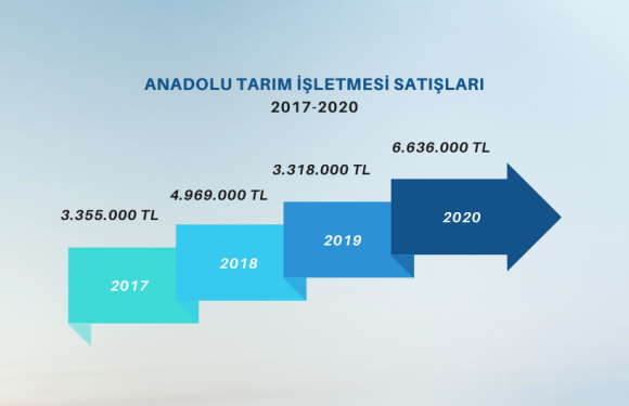 Anadolu TİM'den rekor satış!
