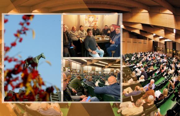 Keeneland Satışları 9 Kasım'da başlıyor!
