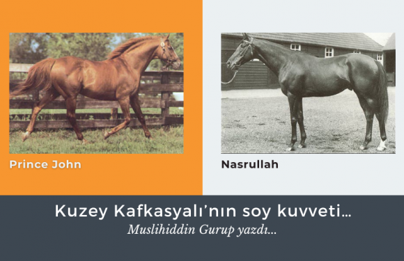 Kuzey Kafkasyalı'nın soy kuvveti…