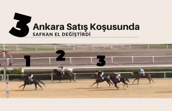 Ankara Satış Koşusunda 3 safkan el değiştirdi