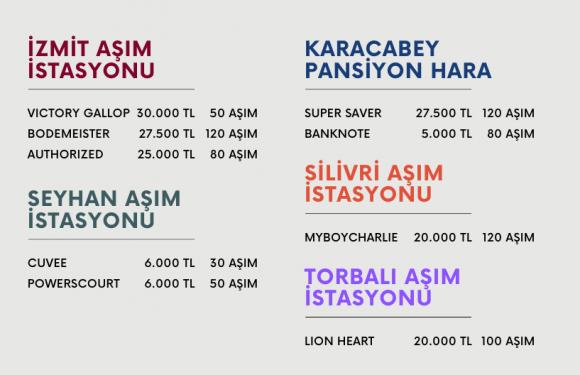 TJK Aygırlarının fiyatları ve adetleri açıklandı