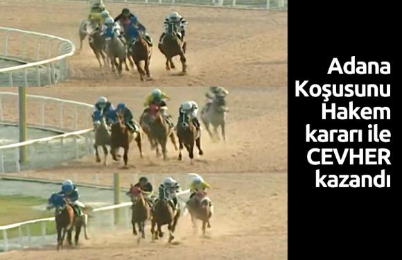 Adana Koşusunu Hakem kararı ile CEVHER kazandı.