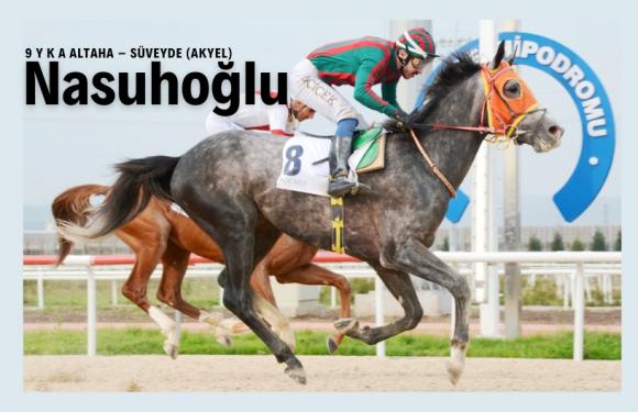23 yarış ve 1.6 Milyon lira kazanan NASUHOĞLU Eğilli Harasında…