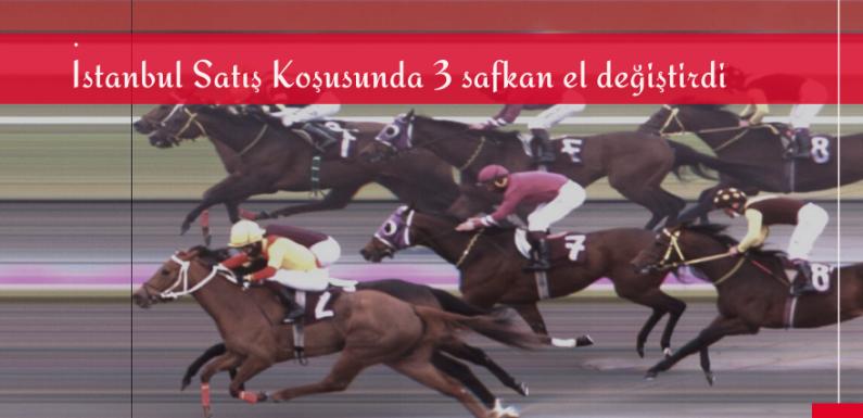 İstanbul Satış Koşusunda 3 safkan el değiştirdi