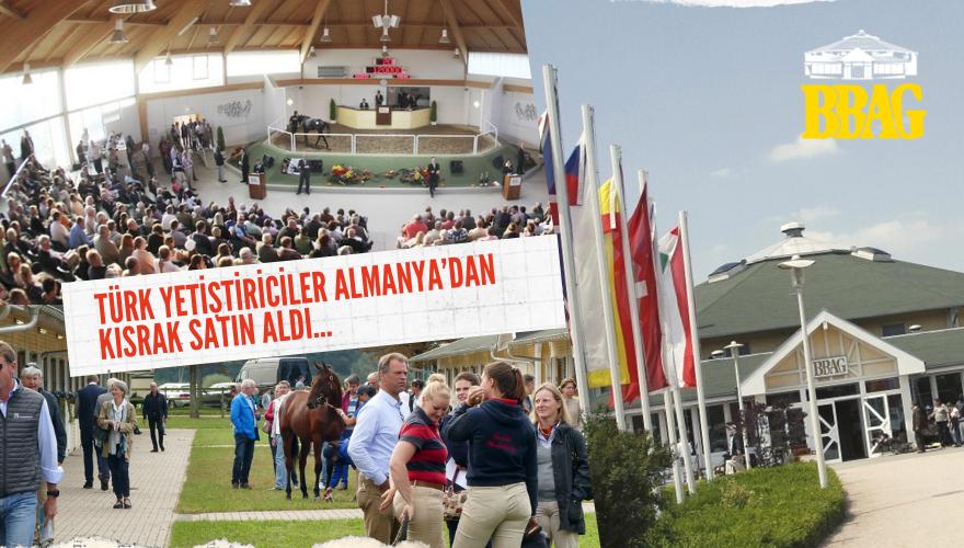 Türk Yetiştiriciler Almanya'dan Kısrak satın aldılar…