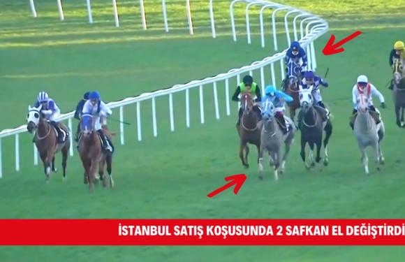 İstanbul Satış Koşusunda 2 safkan el değiştirdi…