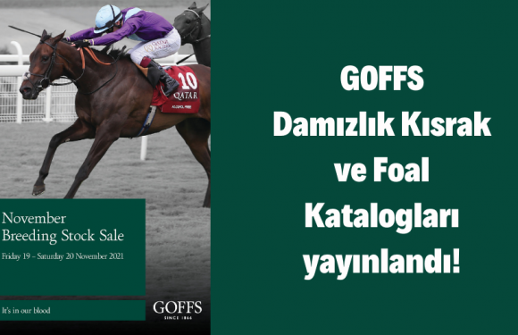 Goffs Damızlık Kısrak ve Foal Katalogları yayınlandı!