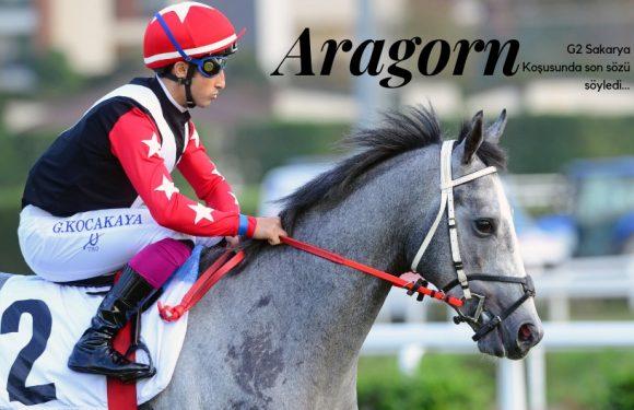 Sakarya'da son sözü ARAGORN söyledi