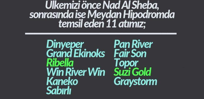 Türk Atçılığının Dubai Karnesi!