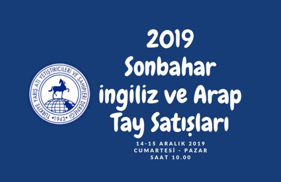TYAYSD 2019 SONBAHAR TAY SATIŞLARI