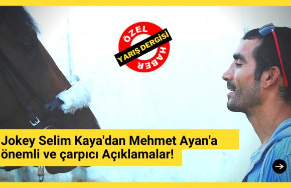 Selim Kaya'dan önemli ve çarpıcı açıklamalar!