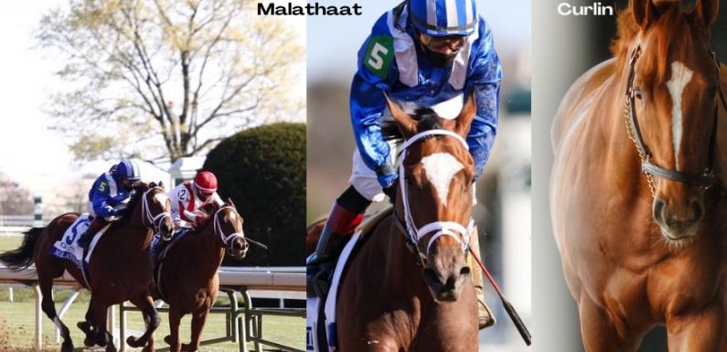 Ashland Stakes'te MALATHAAT geçilmezliğini korudu!