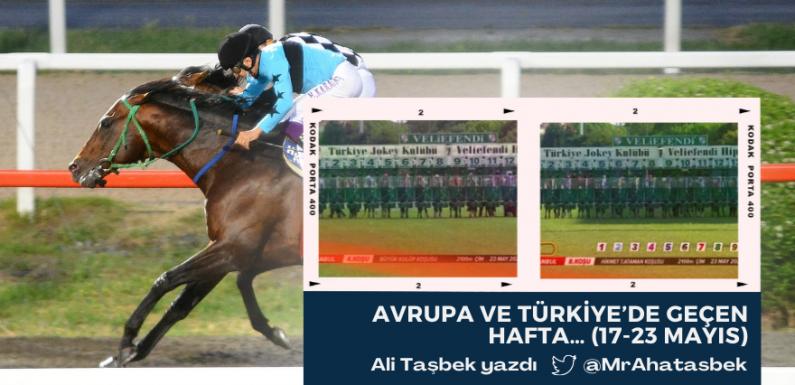 Avrupa ve Türkiye'de Geçen Hafta (17-23 Mayıs)
