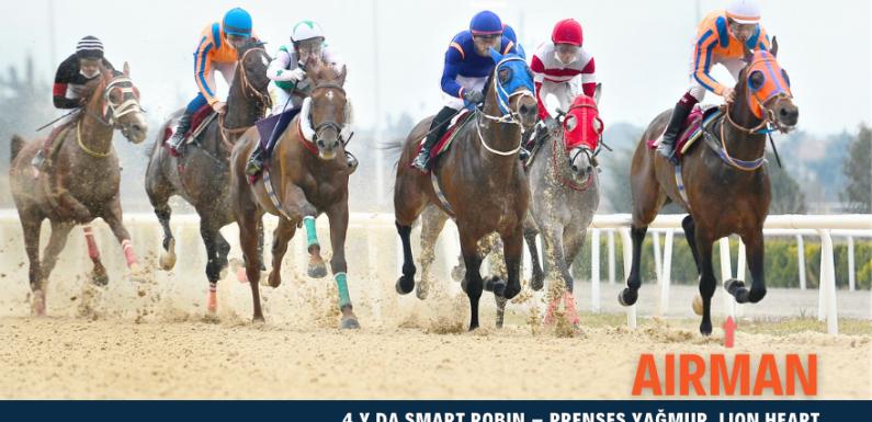 Satılık 5 yarış kazanmış, koşar durumda İngiliz Atı…