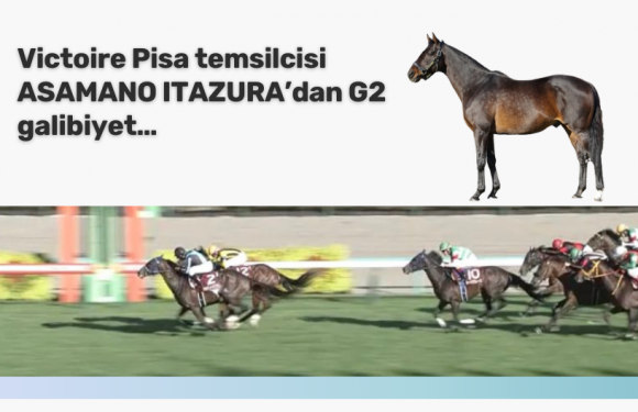 Victoire Pisa temsilcisi ASAMANO ITAZURA'dan G2 galibiyet…
