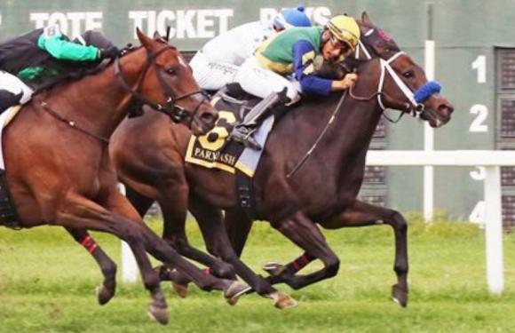 G3 Parx Dash Stakes'i Tizway'in oğlu THE CRITICAL WAY kazandı